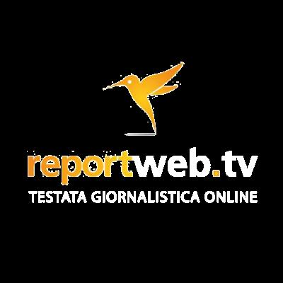 10 Report Web